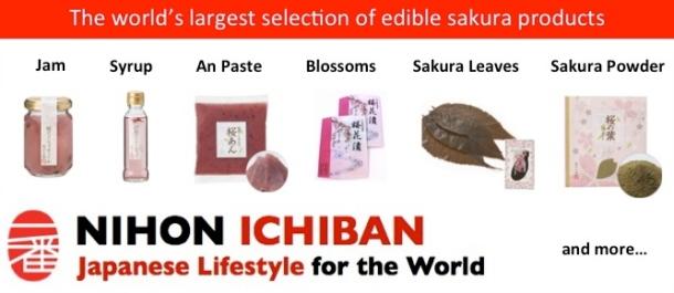 Sakura Banner